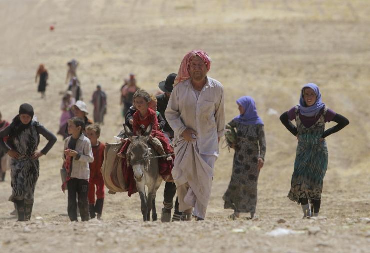 Êzidîler'in IŞİD Teröründen Kaçışı 10