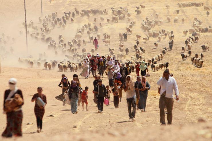 Êzidîler'in IŞİD Teröründen Kaçışı 3