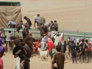 Êzidîler'in IŞİD Teröründen Kaçışı