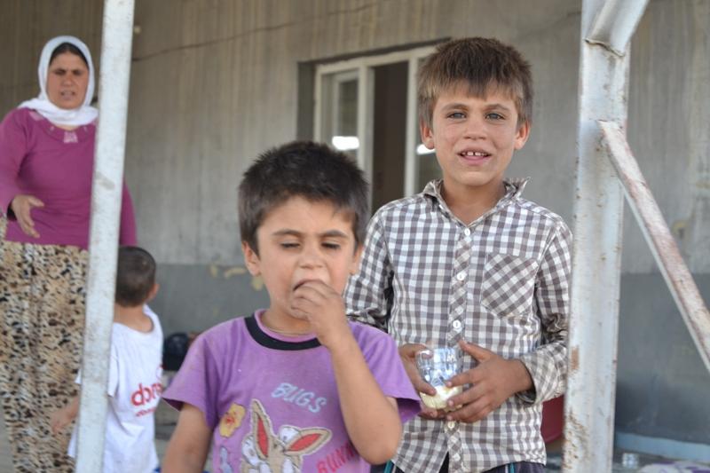 Şırnak'taki Ezidi Kampına Yardım 14