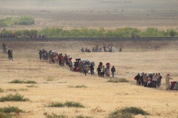 Rojava'dan Sınırlara İnsan Seli 21
