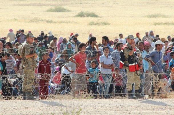Rojava'dan Sınırlara İnsan Seli 25