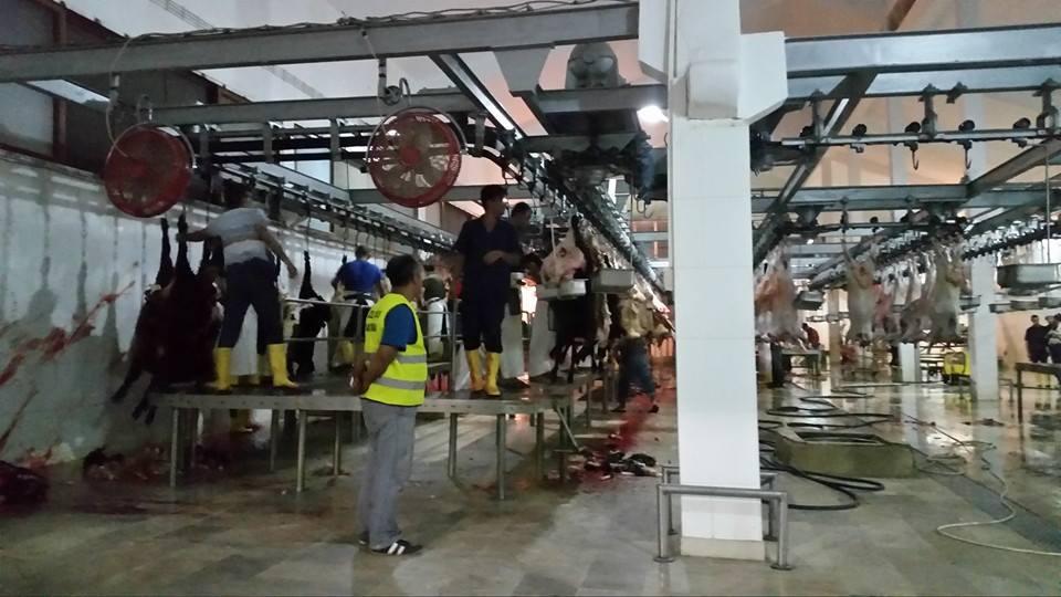 Öze Dönüş Platformu'nun Kobanili Muhacirlere Yardım Çalışması 60