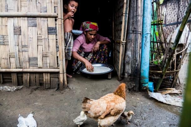 Rohingya Müslümanlarının yaşam mücadelesi 2