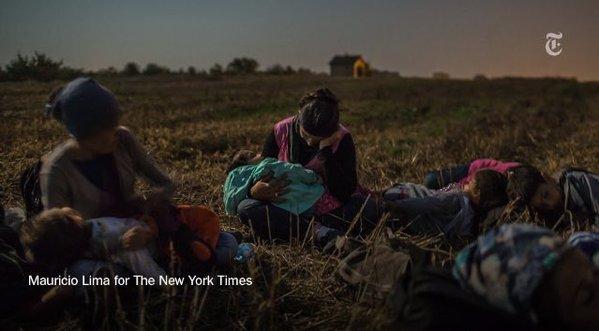 Dramı çeken mülteciler, ödülü alan fotoğrafçılar! 13