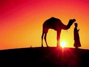 Selman-ı Farisi: Bir Arayıcının Hikâyesi