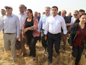 İçişleri Bakanı Açıkladı:Cizre'de son durum