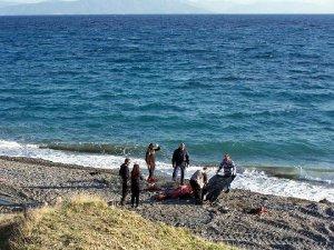 Umut Yolculuğunda 9 Kişi Daha Öldü