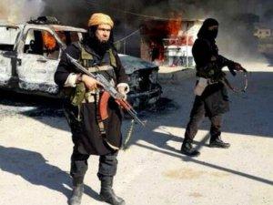 Türkiye'de IŞİD'e sempati oranı yüzde?