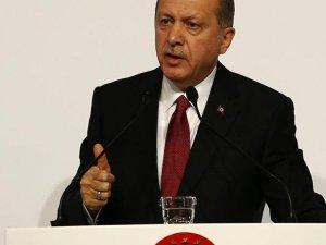 Erdoğan, Rus uçağının 'aidiyeti bilinmeden' düşürüldüğünü açıkladı