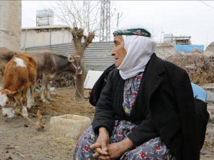 Depremden Hayvanların Çıkardığı Ses Sayesinde Kurtuldu