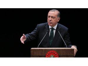 Erdoğan'dan Almanya'ya: Uygulamanız Nazi uygulaması gibi