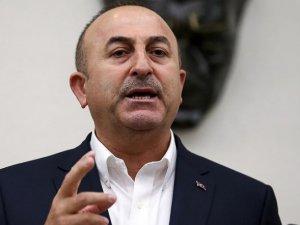 Çavuşoğlu: Hollanda Türkiye'den Özür Dileyecek