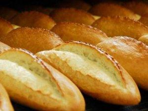 GDO'lu ekmek hakkında soruşturma başlatıldı
