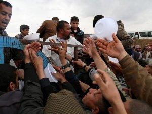 Musul'da 'insani felaket' uyarısı