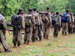 Hiltermann: Piştî DAIŞê, PKK li ser Herêma Kurdistanê gef e