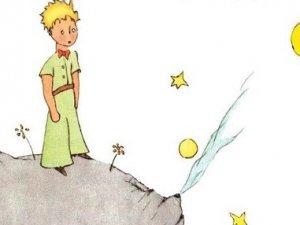 'Mîrzeyê Piçûk' bi 300 zimanî hatiye wergerandin