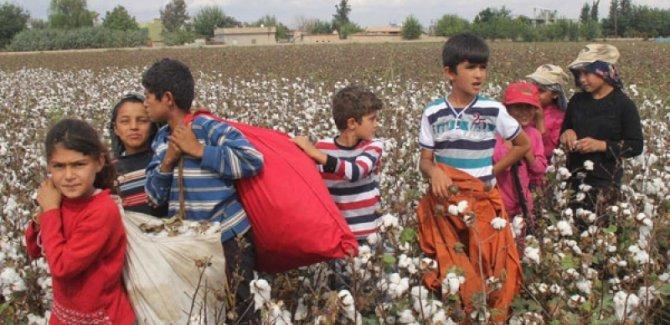 DİSK'ten çalışan çocuklara ilişkin rapor