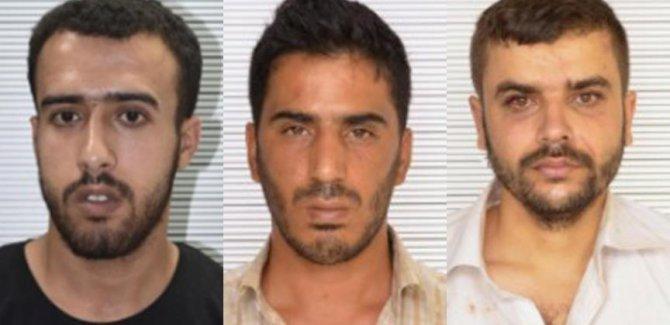 Şanlıurfa'da IŞİD'in 'infaz timi' yakalandı