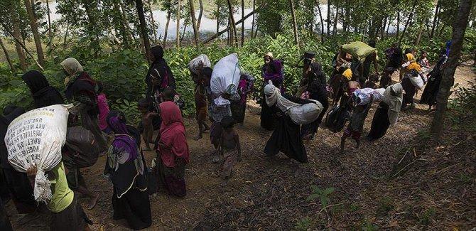 Almanya'dan Myanmar hükümetine çağrı