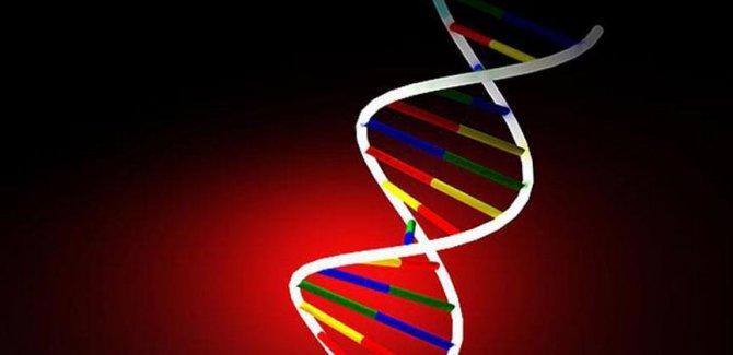 'Genler hangi kansere yakalanma riski olduğunu söyleyecek'