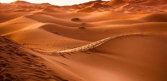 Suudi Arabistan'da 85 bin yıllık keşif