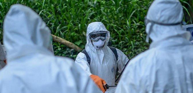 Kongo Demokratik Cumhuriyeti'nde Ebola salgını