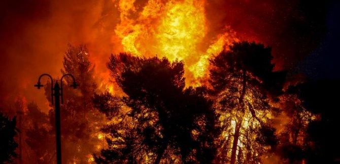 İklim değişkiliği orman yangınlarını körüklüyor