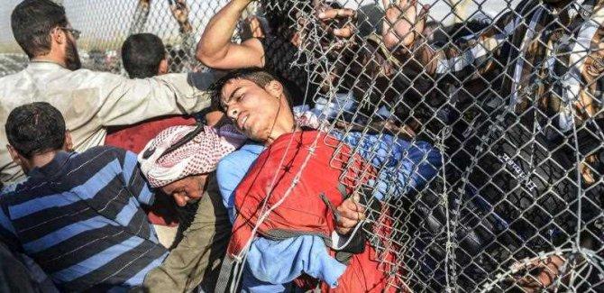 Suriyelilerin Yarısı Türkiye'de Kalmak İstiyor