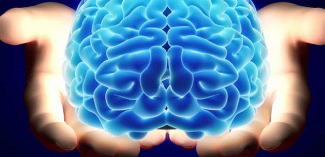 3D yazıcıyla 9 ay hayatta kalabilen mini beyinler üretildi