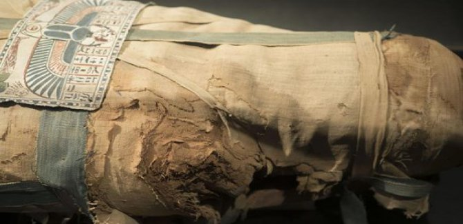 3 bin yıl öncesine ait 8 mumya bulundu