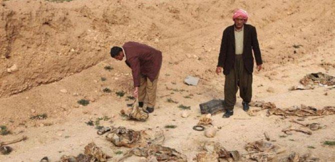 BM IŞİD'in katliamlarını araştıracak