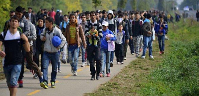 Göç Örgütü: 700 bin Afgan göçmen İran'ı terk etti
