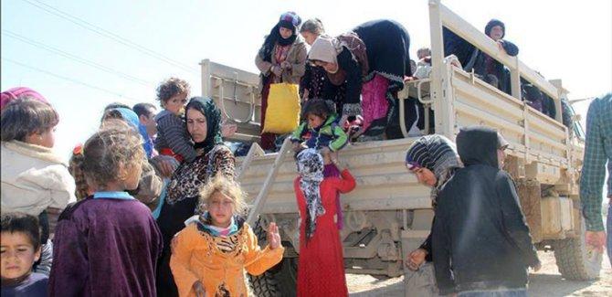 37 kampên penaberan li Herêma Kurdistanê hene