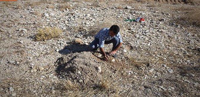 Şengal'de 7 yeni toplu mezar bulundu
