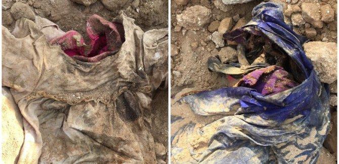 Termên enfalkiriyên Kurd vedigerin xaka Kurdistanê