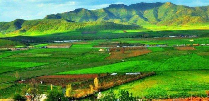 Îro roja jînge ya Kurdistanê ye