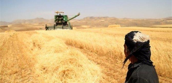 Kürdistanlı çiftçiler Bağdat hükümetini protesto etti