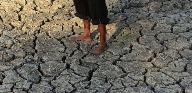 Kuraklık yüzünden 4700 çiftçi intihar etti