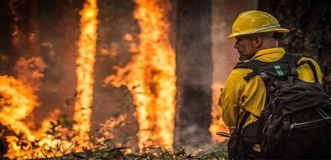 Amazon ormanlarında bu yıl 72 binden fazla yangın çıktı