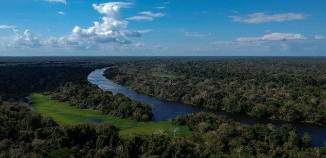 Amazon dünya için neden önemli?