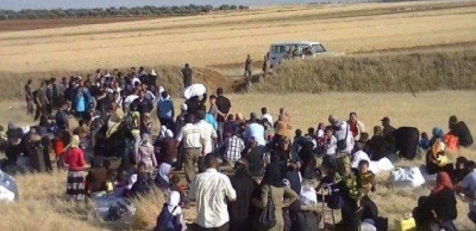 Kürdistan Hükümeti: Hiçbir göçmeni zorla göndermedik
