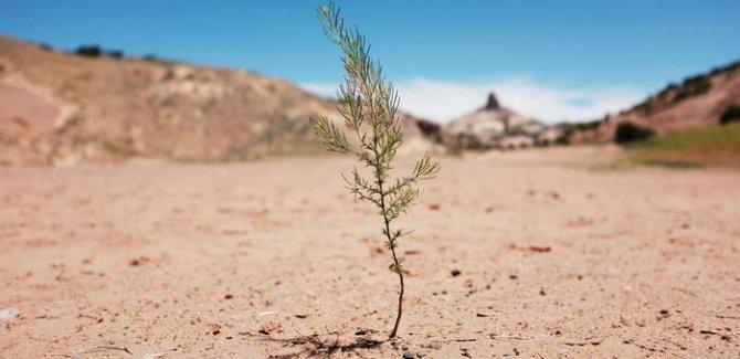 İklim değişikliği en çok Akdeniz'i etkiliyor