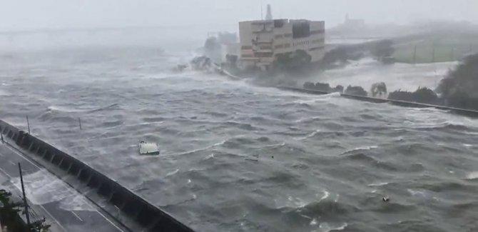 Japonya, Hagibis tayfununa hazırlanıyor