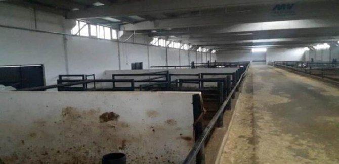 Diyarbakır'da Çiftlik Bank vakası