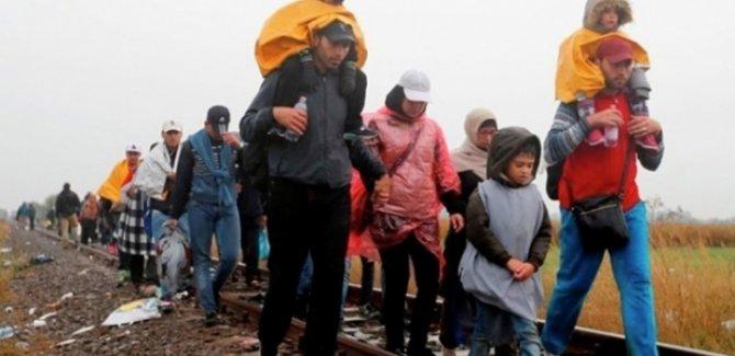 İsveç 27 bin Suriye ve Rojavalı mülteciye vatandaşlık hakkı verdi