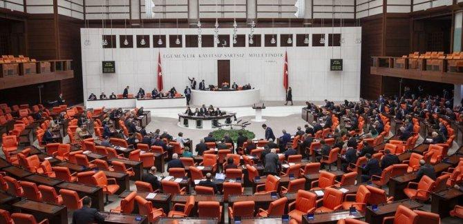 'Silahlı Kürt muhalefeti' olarak tanımlayan HDP'li Işık'a ceza