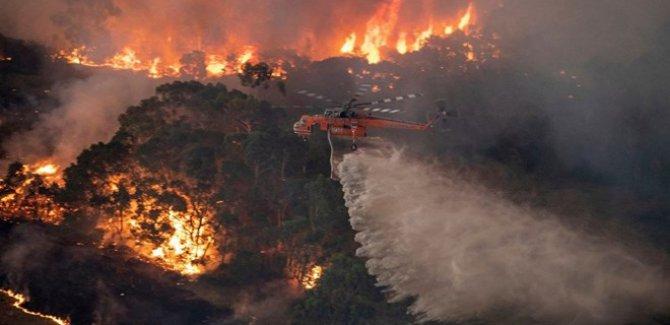 Avustralya'daki yangın 6 ay sonra kontrol alındı