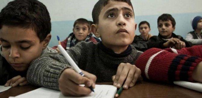 """""""Kürt ebeveynlerin yüzde 72'si Kürtçe'nin resmi dil olmasını istiyor"""""""