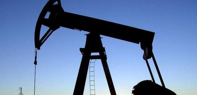 Petrolun varil fiyatının 5 dolara kadar düşebilir
